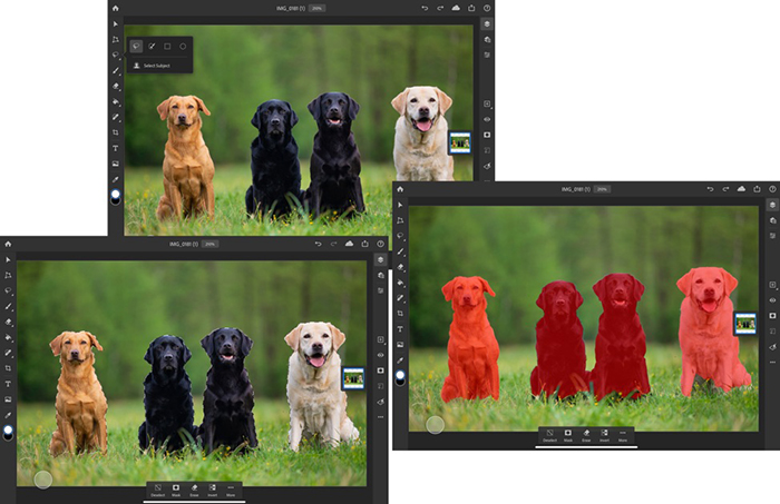 photoshop-for-ipad-with-select-subject-feature